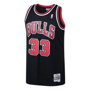 NBA Nike Chicago Bulls Scottie Pippen Jersey 33